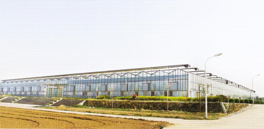 glass greenhouse 01