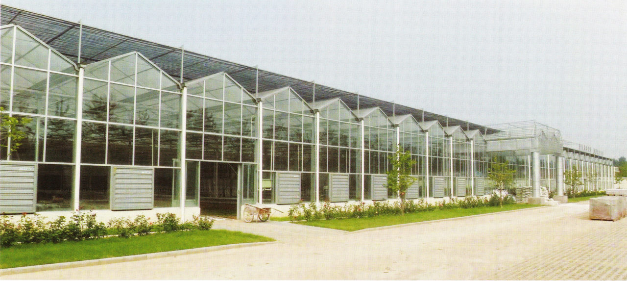 glass greenhouse 02