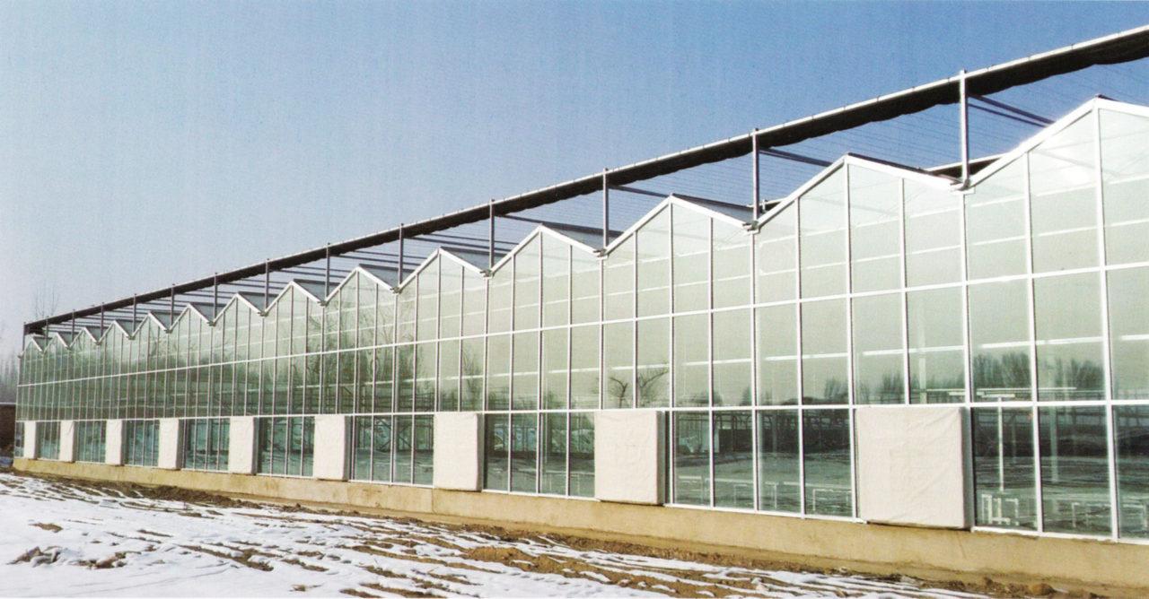 glass greenhouse 03