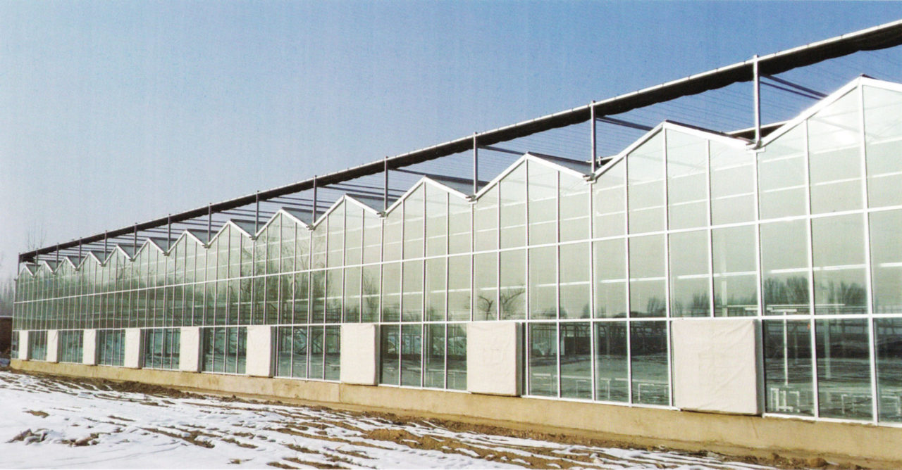 glass greenhouse 03