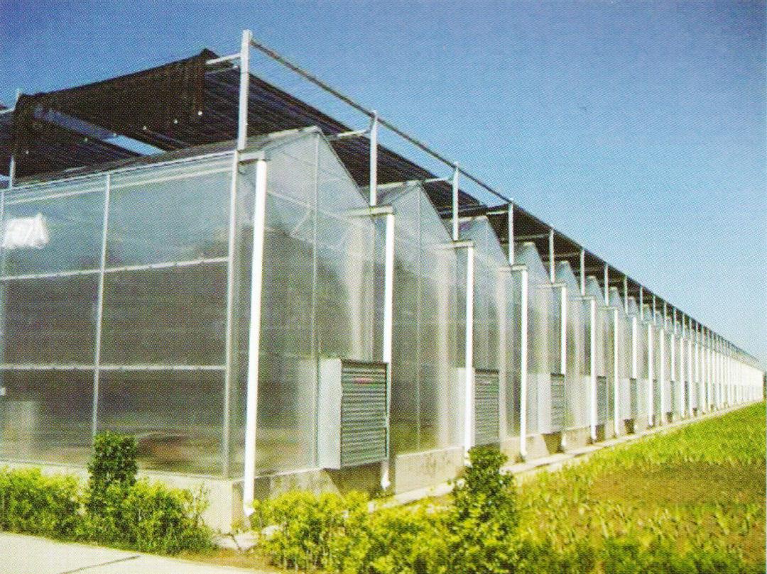 Sunlight Greenhouse 01