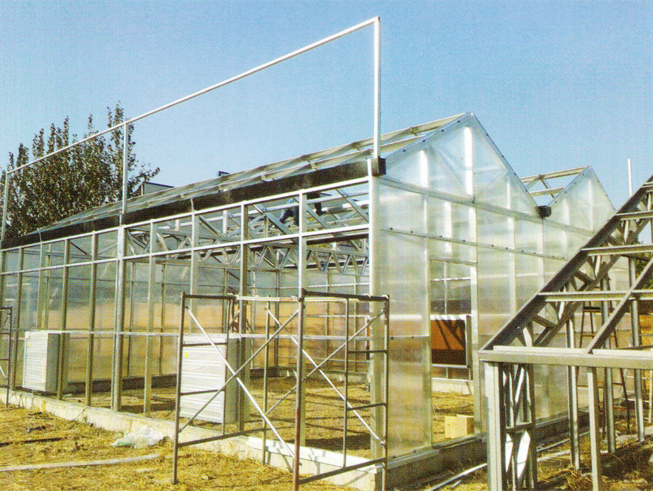 Sunlight Greenhouse 03