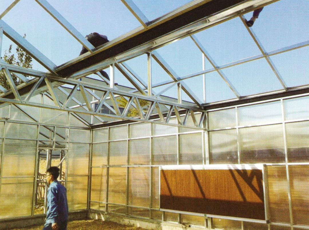 Sunlight Greenhouse 04