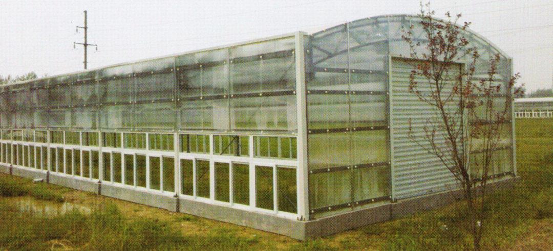 Sunlight Greenhouse 05