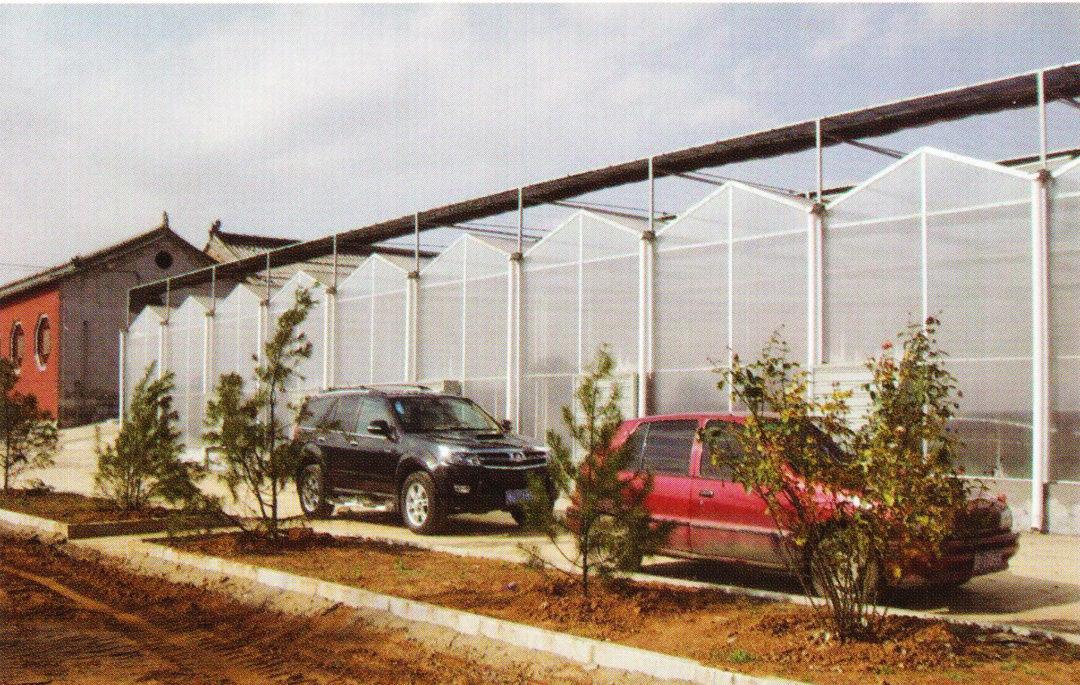 Sunlight Greenhouse
