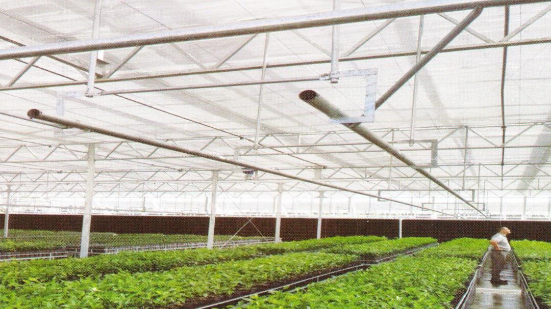 Sunlight Greenhouse 08