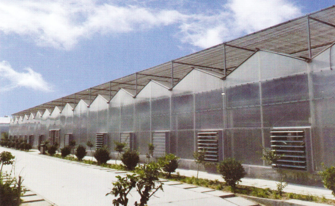 Sunlight Greenhouse 09