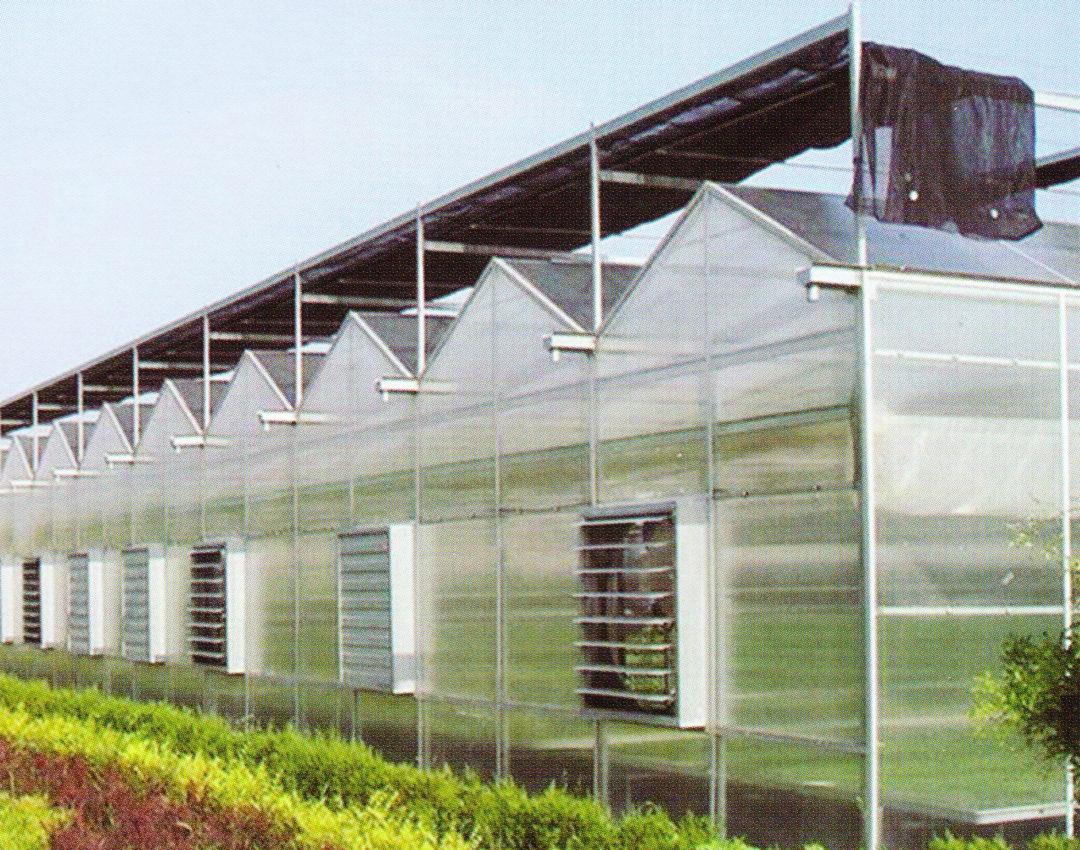 Sunlight Greenhouse 10