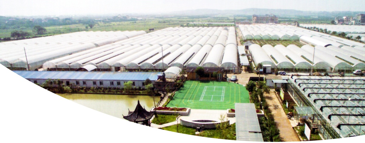 Commercial Greenhouses Covers