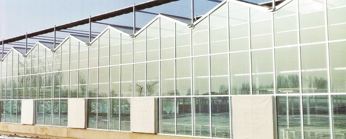 Multi Span Glass Greenhouse 03
