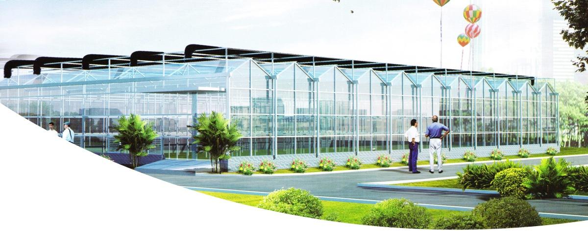Multi-Span Glass Greenhouse Cover